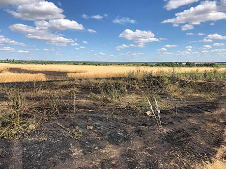 Спалені поля у Мачухівській ОТГ